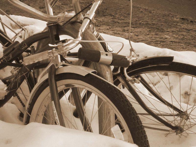 Bikes and tikes