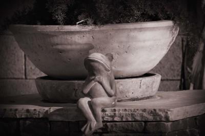 Dark_frog