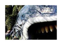 Whale_disney